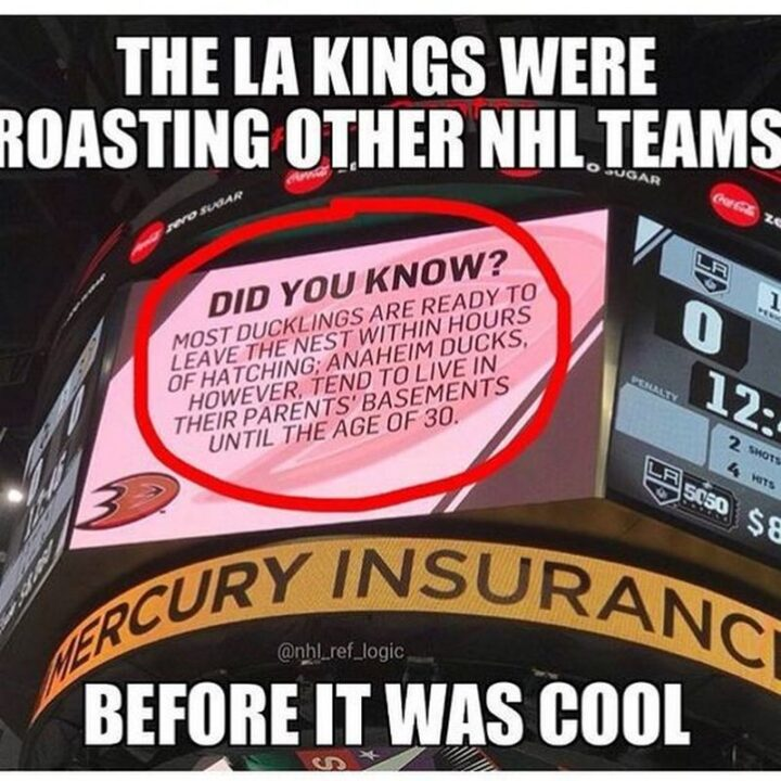 """""""The Los Angeles Kings were roasting other NHL teams before it was cool. Did you know? Most ducklings are ready to leave the nest within hours of hatching; Anaheim Ducks, however, tend to live in their parent's basements until the age of 30."""""""