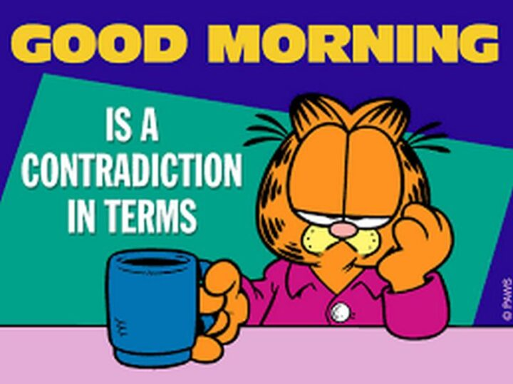 """""""Good morning is a contradiction of terms."""""""