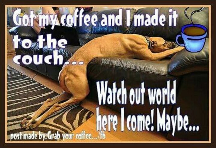 """""""Got my coffee and I made it to the couch...Watch out world, here I come! Maybe..."""""""