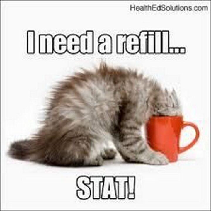 """I need a refill...Stat!"""