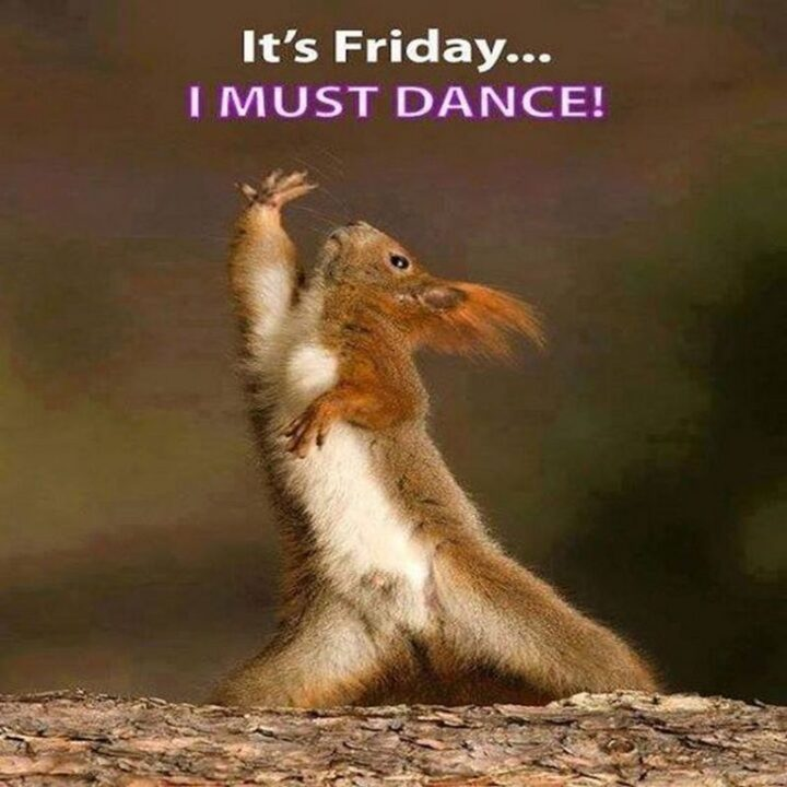 """""""It's Friday...I must dance!"""""""