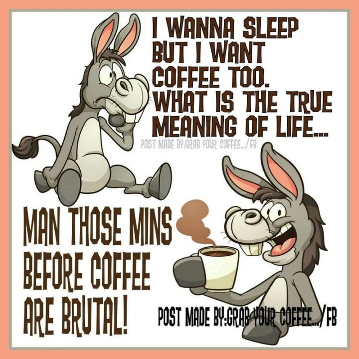 """""""I wanna sleep but I want coffee too. What is the true meaning of life...Man those minutes before coffee are brutal!"""""""