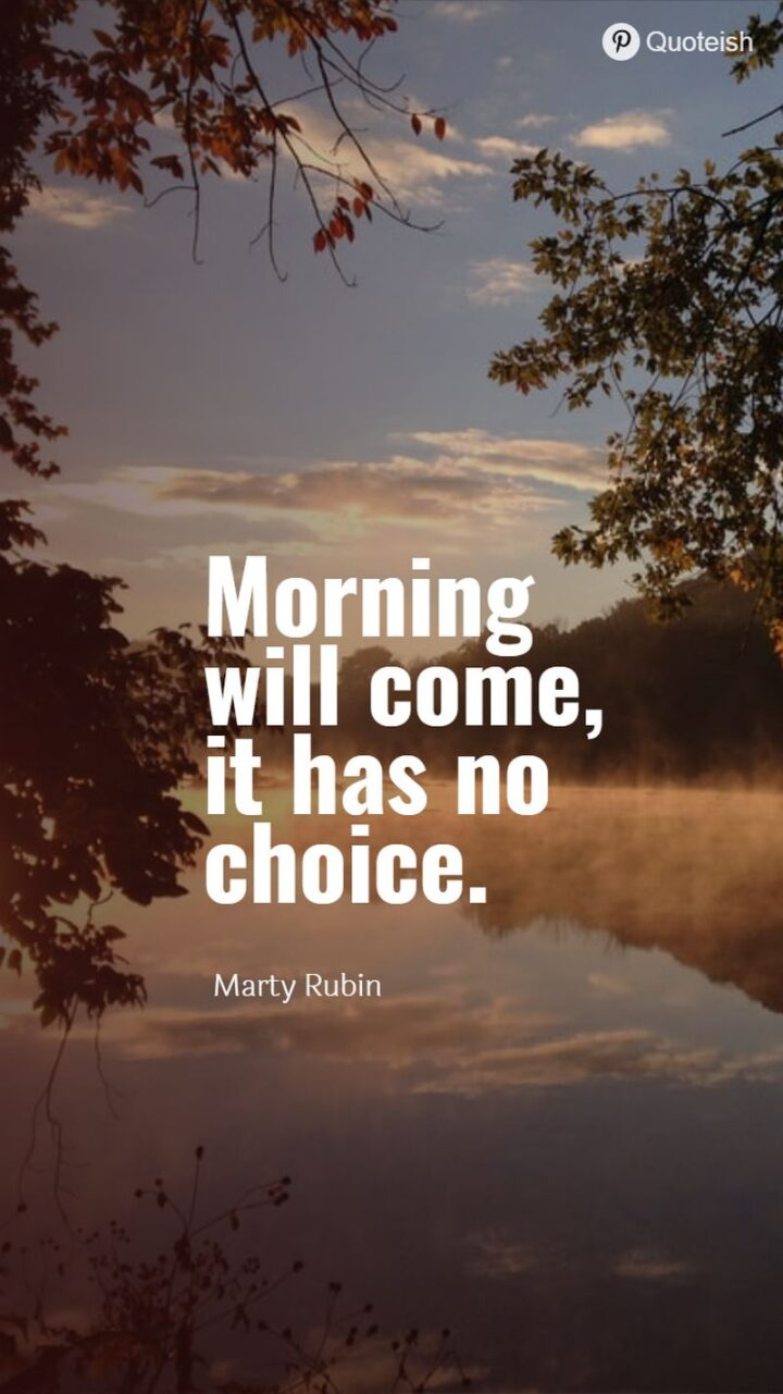 """""""Morning will come, it has no choice."""" - Marty Rubin"""
