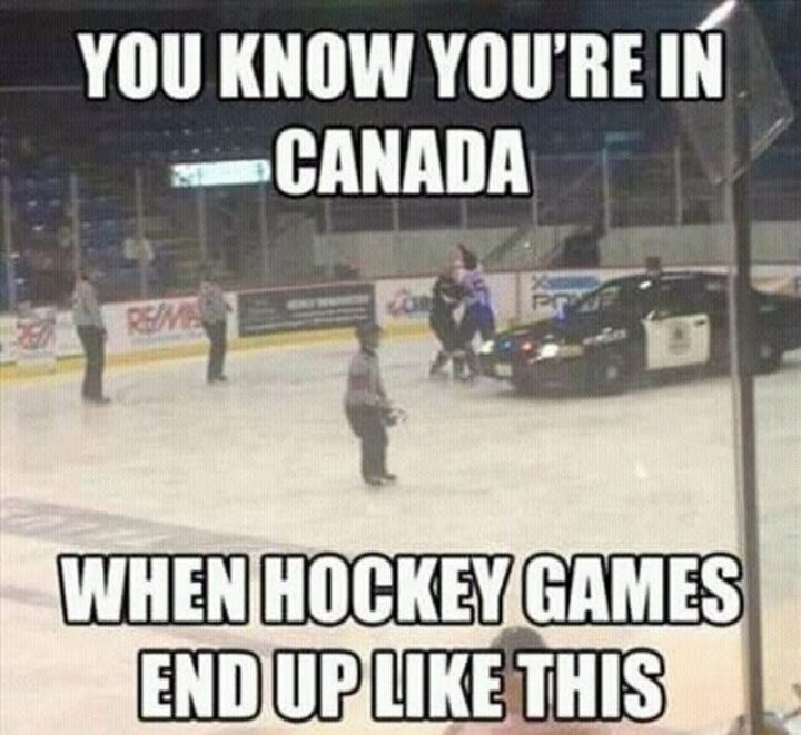 """""""You know you're in Canada when hockey games end up like this."""""""