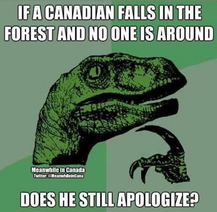 """""""If a Canadian falls in the forest and no one is around, does he still apologize?"""""""