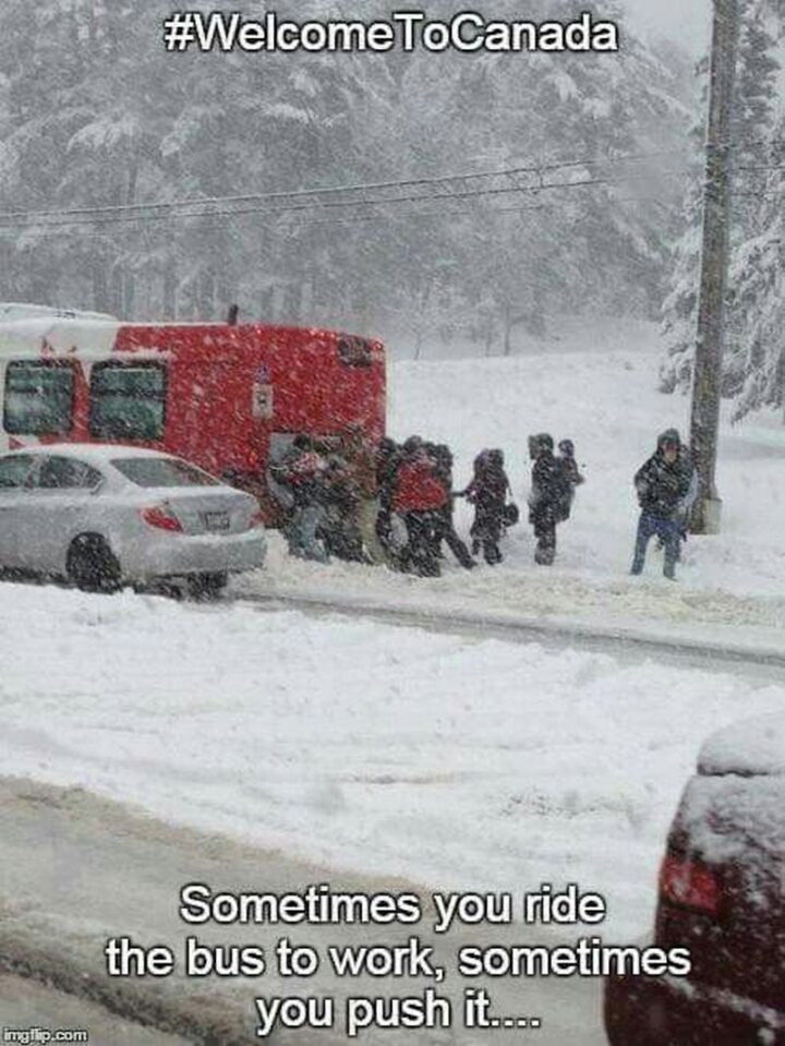 """""""Welcome to Canada. Sometimes you ride the bus to work, sometimes you push it..."""""""