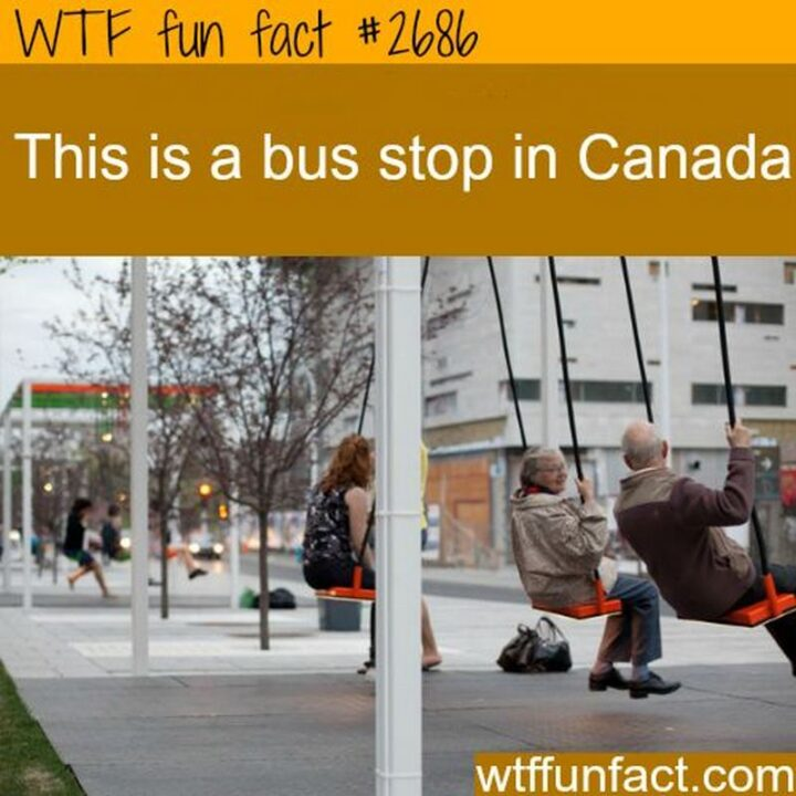 """""""WTF fun fact #2686: This is a bus stop in Canada."""""""