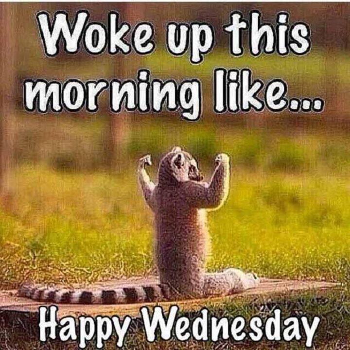 """Woke up this morning like...Happy Wednesday, hump day."""