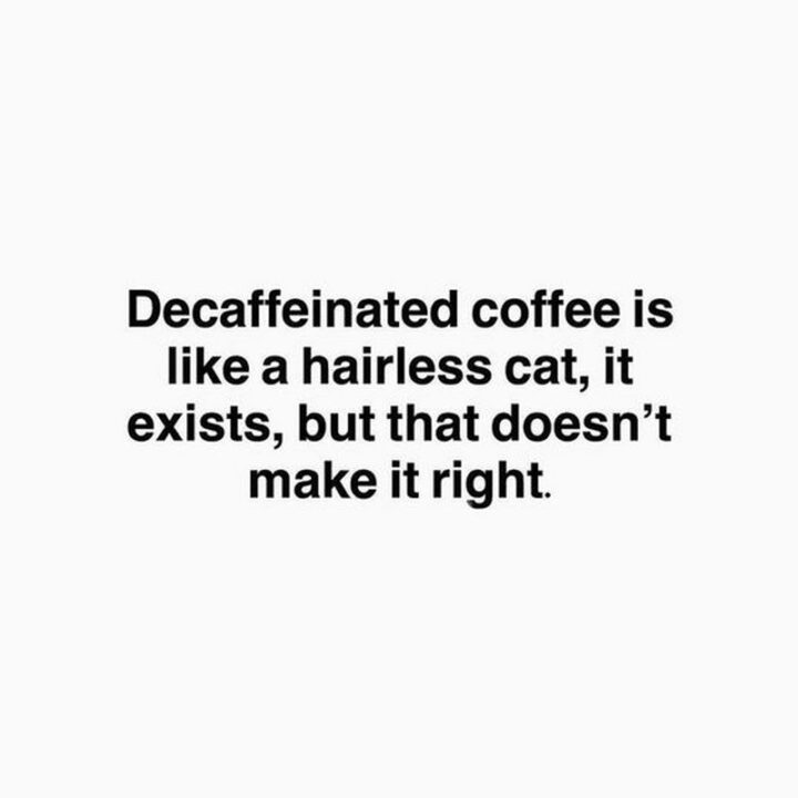 """""""Decaffeinated coffeeis like a hairless cat, it exists, but that doesn't make it right."""" - Unknown"""
