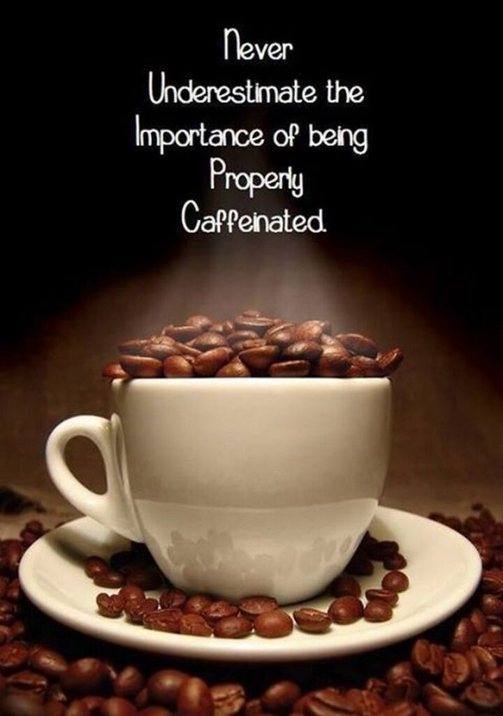 """""""Never Underestimate the Importance of Being Properly Caffeinated."""" - Unknown"""