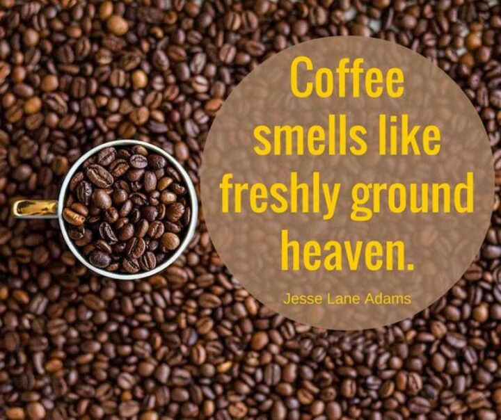 """Smells like freshly ground heaven."" - Jessi Lane Adams"
