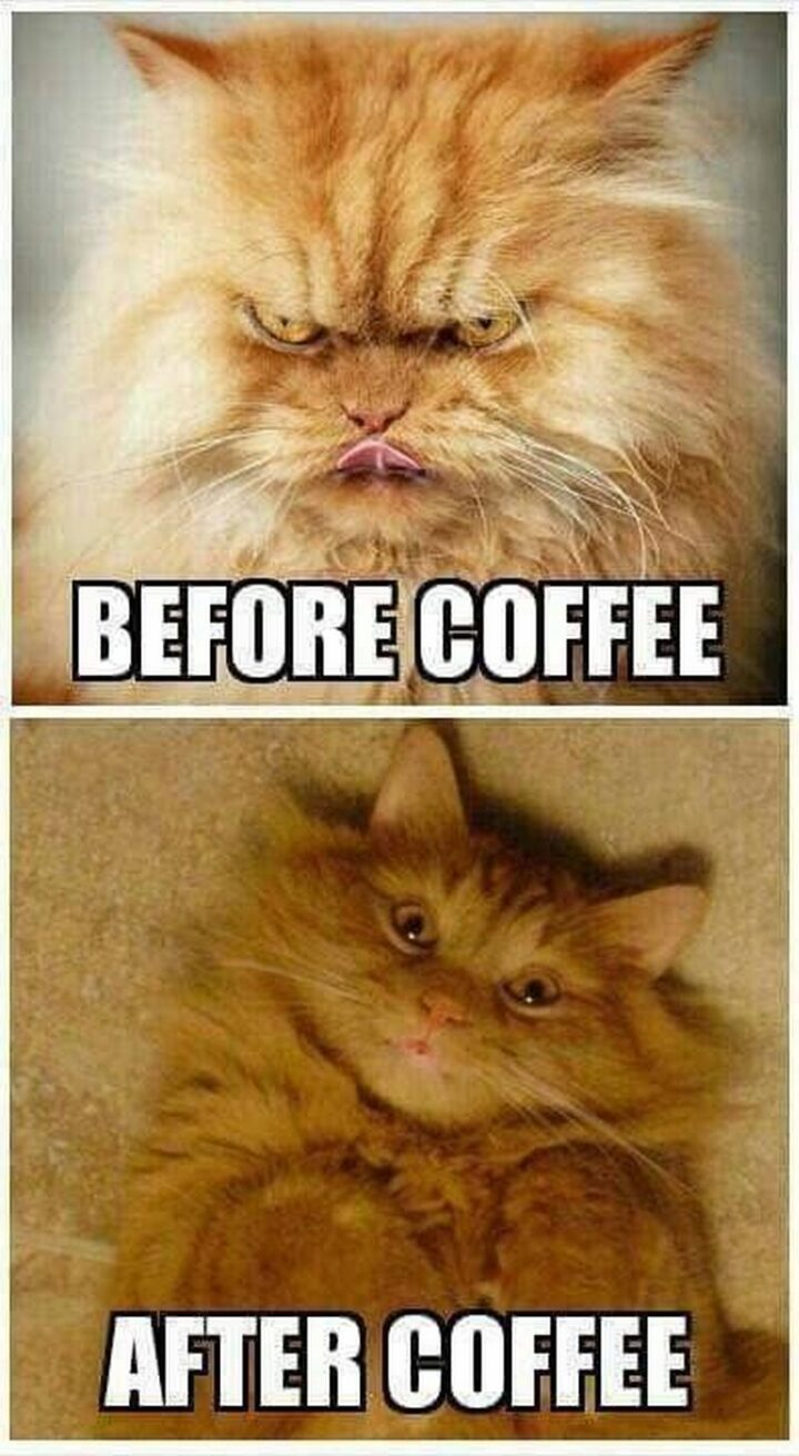 """""""Before coffee. After coffee."""""""