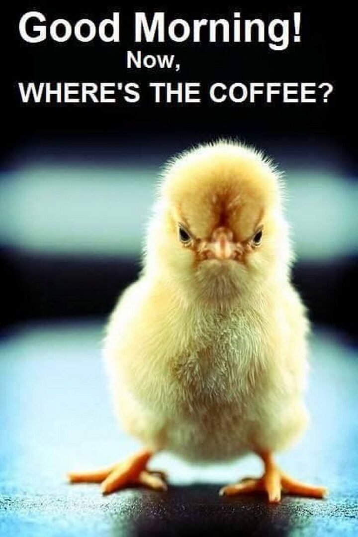 """""""Good morning! Now, where's the coffee?"""""""