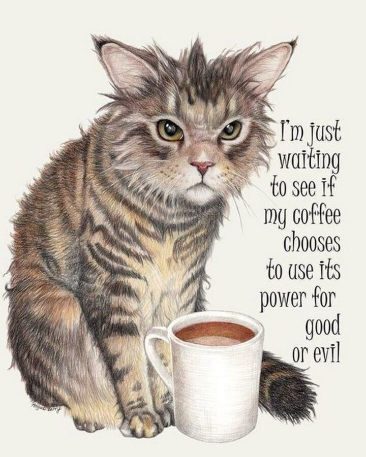 """""""I'm just waiting to see if my coffee chooses to use its power for good or evil."""""""