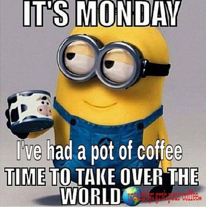 """""""It's Monday. I've had a pot of coffee. Time to take over the world."""""""