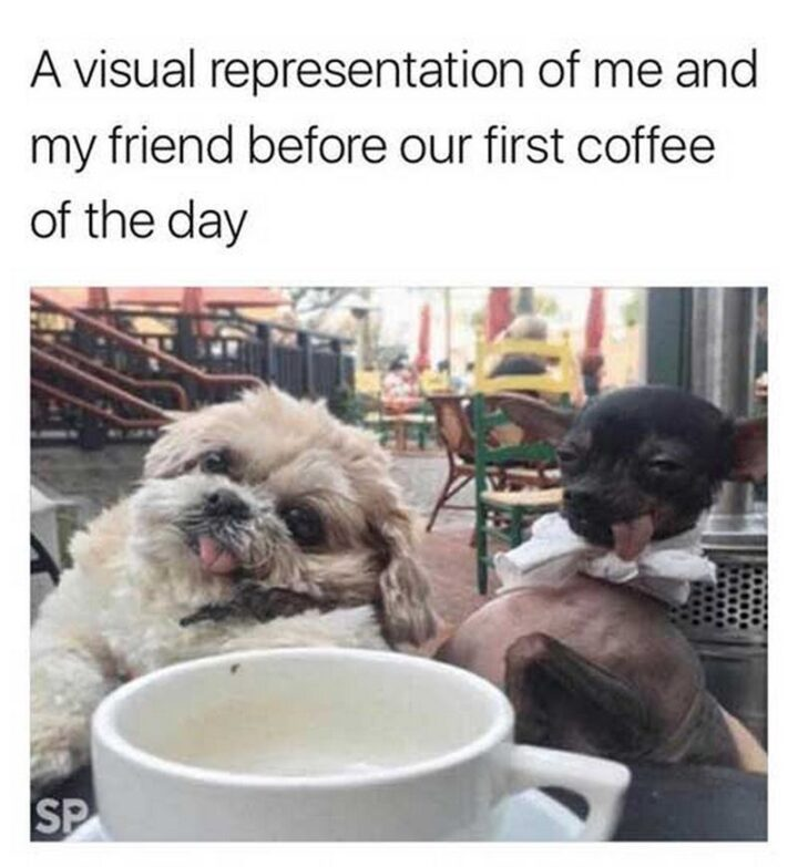 """""""A visual representation of me and my friend before our first coffee of the day."""""""