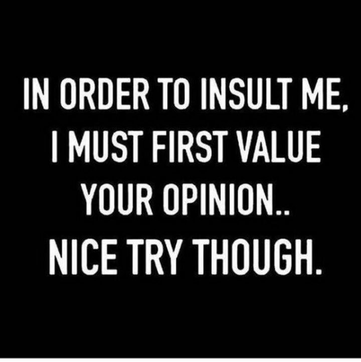 """""""In order to insult me, I must first value your opinion...Nice try though."""""""