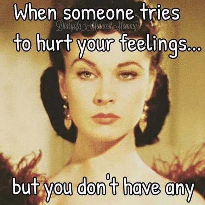 """""""When someone tries to hurt your feelings...But you don't have any."""""""