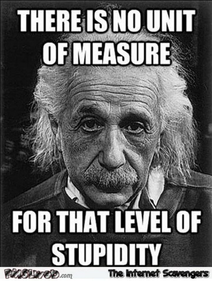 """""""There is no unit of measure for that level of stupidity."""""""