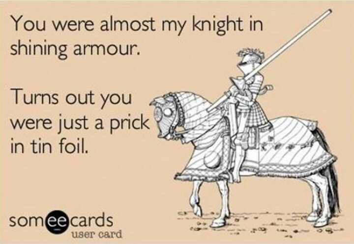 """""""You were almost my knight in shining armor. Turns out you were just a prick in tin foil."""""""