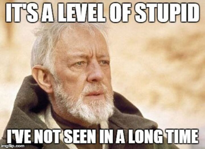 "It's a level of stupid I've not seen in a long time."""