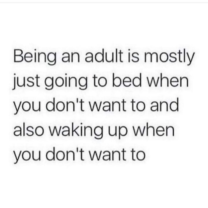 """65 Stupid Memes: """"Being an adult is mostly just going to bed when you don't want to and also waking up when you don't want to."""""""