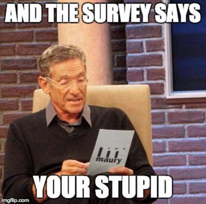 """""""And the survey says you're stupid."""""""