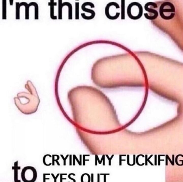 """""""I'm this close to crying my [censored] eyes out."""""""