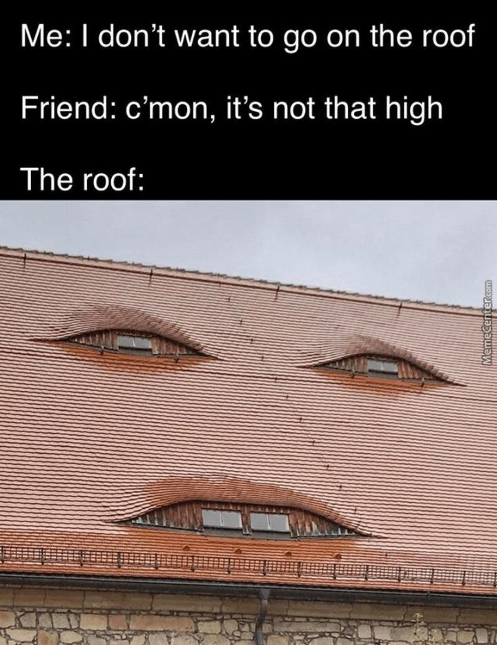 """""""Me: I don't want to go on the roof. Friend: C'mon, it's not that high. The roof:"""""""