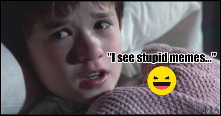 """""""I see stupid memes."""""""