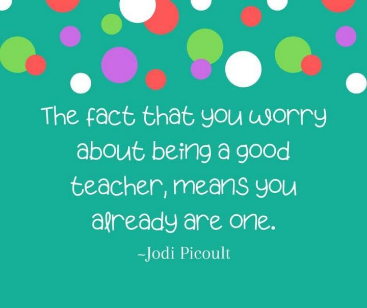 """""""The fact that you worry about being a good teacher means that you already are one."""" - Jodi Picoult"""