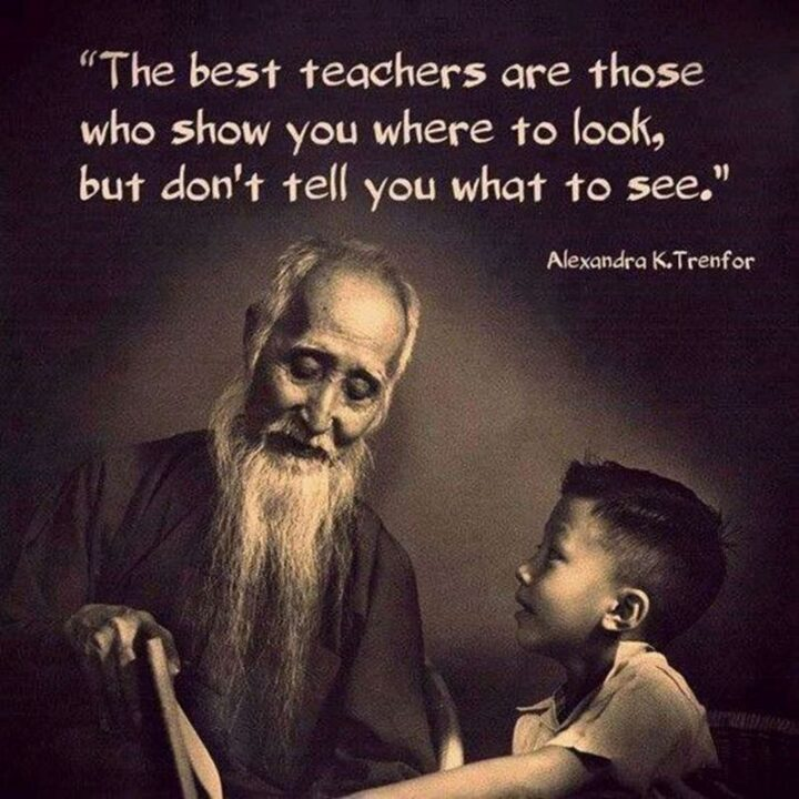 """""""The best teachers are those who show you where to look but don't tell you what to see."""" - Alexandra K. Trenfor"""