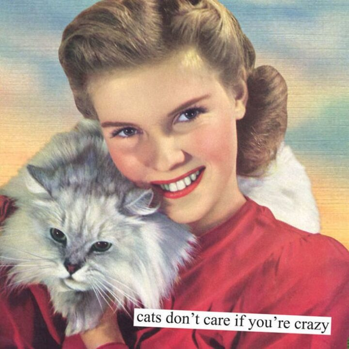 """Vintage Humor - """"Cats don't care if you're crazy."""""""