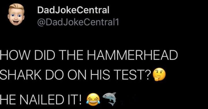 """63 Dad Joke Memes - """"How did the hammerhead shark do on his test? He nailed it!"""""""
