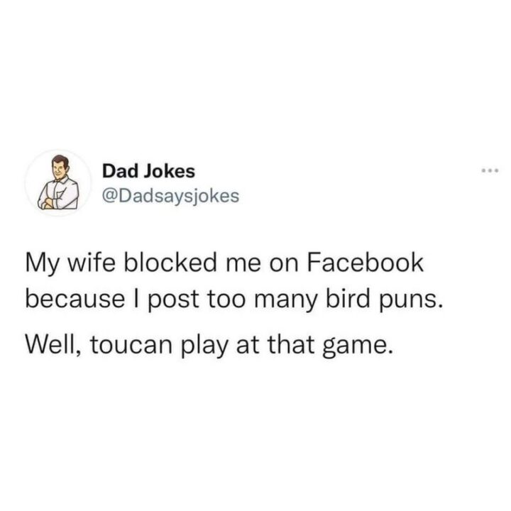 """""""My wife blocked me on Facebook because I post too many bird puns. Well, toucan play at that game."""""""
