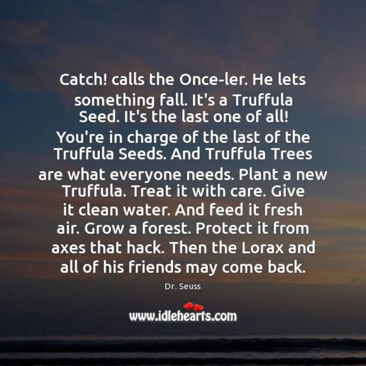 """""""Catch! calls the Once-ler. He lets something fall. It's a Truffula Seed. It's the last one of all! You're in charge of the last of the Truffula Seeds. And Truffula Trees are what everyone needs. Plant a new Truffula. Treat it with care. Give it clean water. And feed it fresh air. Grow a forest. Protect it from axes that hack. Then the Lorax and all of his friends may come back."""" - Dr. Seuss, The Lorax"""