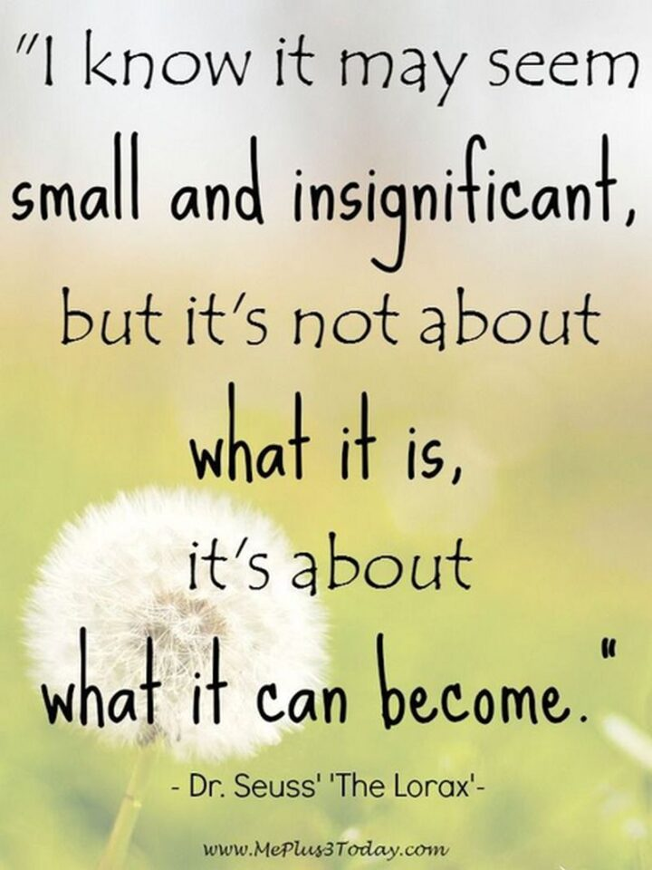 """""""I know it may seem small and insignificant, but it's not about what it is, it's about what it can become."""" - Dr. Seuss, The Lorax"""