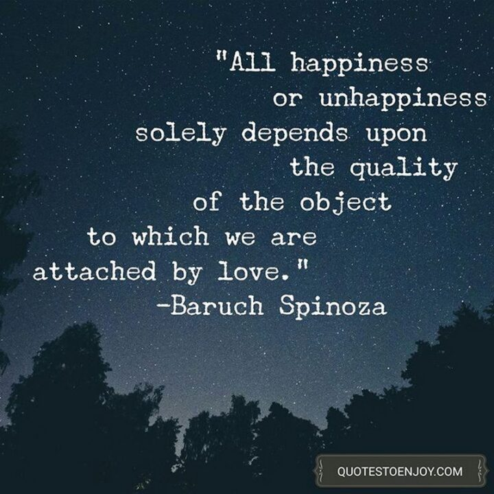 """""""All happiness or unhappiness solely depends upon the quality of the object to which we are attached by love."""" - Baruch Spinoza"""