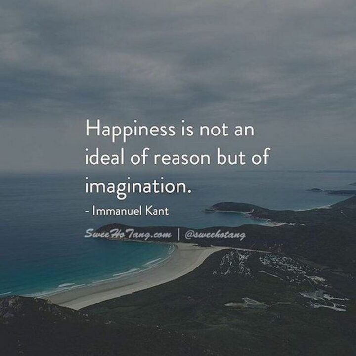 """""""Happiness is not an ideal of reason, but of imagination."""" - Immanuel Kant"""