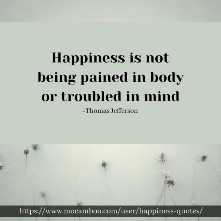 """""""Happiness is not being pained in body or troubled in mind."""" - Thomas Jefferson"""