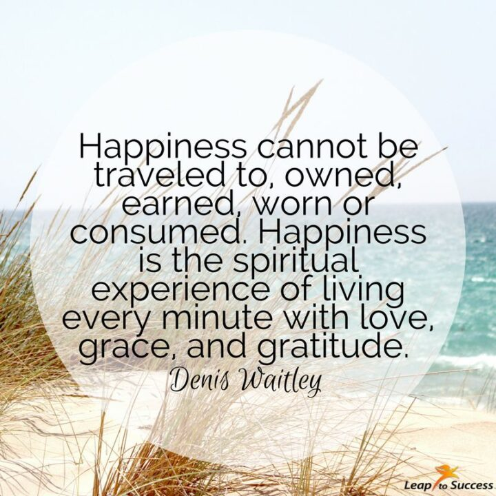 """""""Happiness cannot be traveled to, owned, earned, worn or consumed. Happiness is the spiritual experience of living every minute with love, grace, and gratitude."""" - Denis Waitley"""