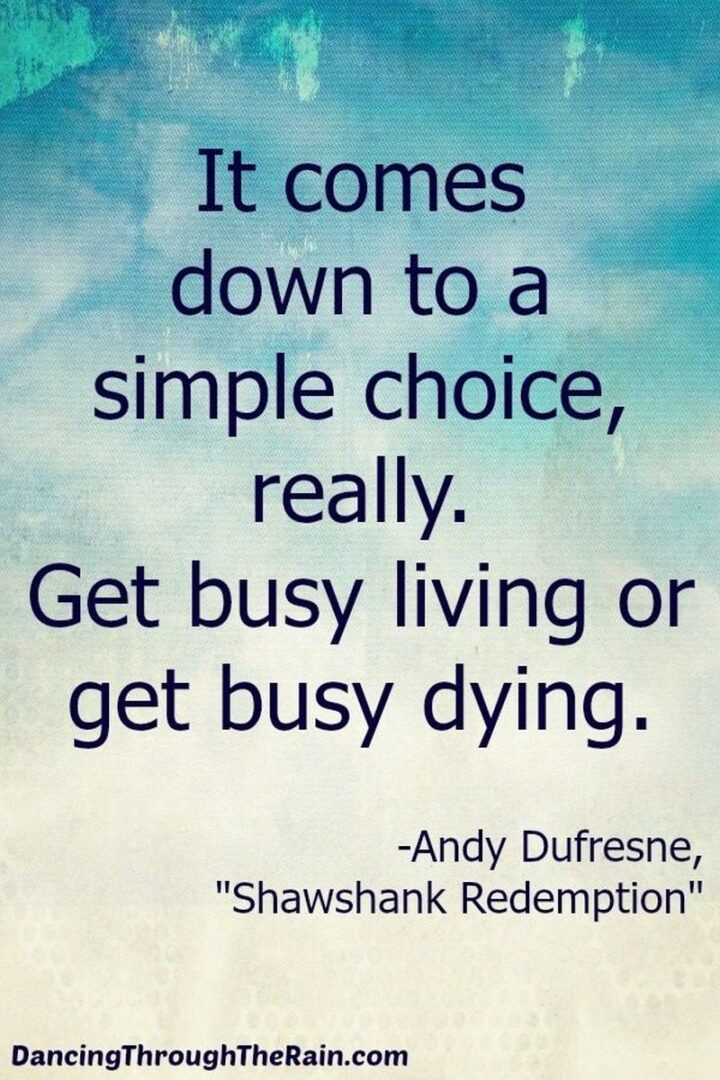 """""""It comes down to a simple choice, really. Get busy living or get busy dying."""" - Andy Dufresne, The Shawshank Redemption"""