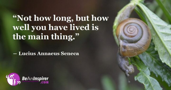 """""""Not how long, but how well you have lived is the main thing."""" - Lucius Annaeus Seneca"""