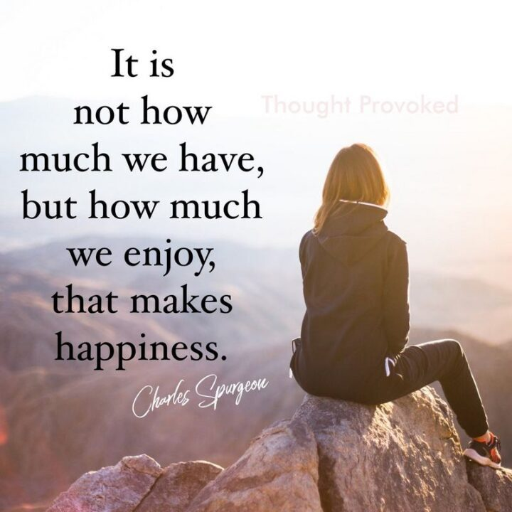 """""""It is not how much we have, but how much we enjoy, that makes happiness."""" - Charles Spurgeon"""