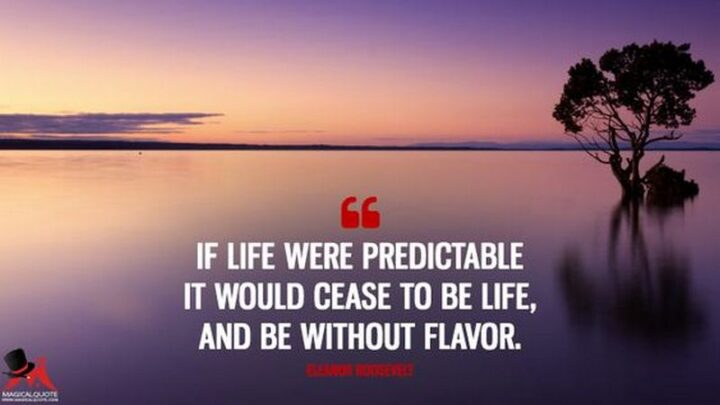 """""""If life were predictable it would cease to be life, and be without flavor."""" - Eleanor Roosevelt"""