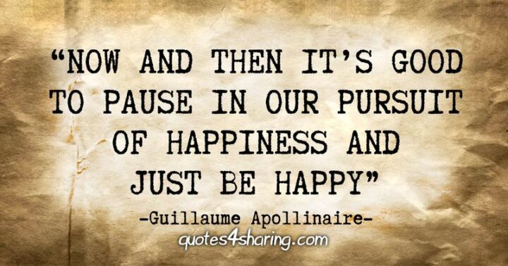 """""""Now and then it's good to pause in our pursuit of happiness and just be happy."""" - Guillaume Apollinaire"""