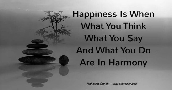 """""""Happiness is when what you think, what you say, and what you do are in harmony."""" - Mahatma Gandhi"""