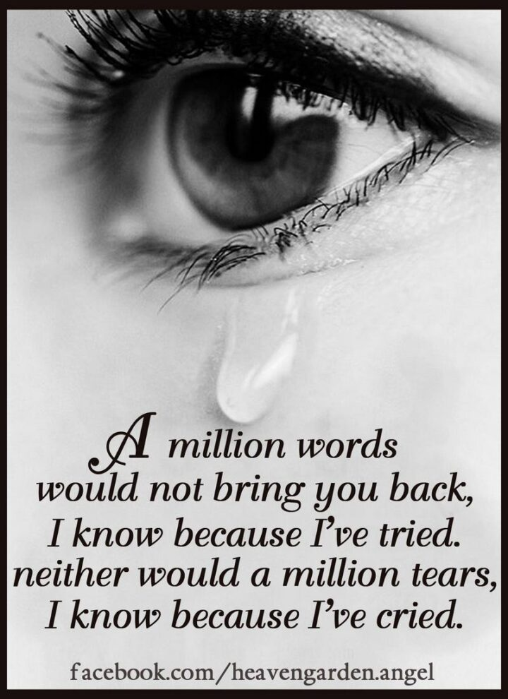 """51 Sad Quotes About Life - """"A million words would not bring you back, I know because I tried, neither would a million tears, I know because I cried."""""""