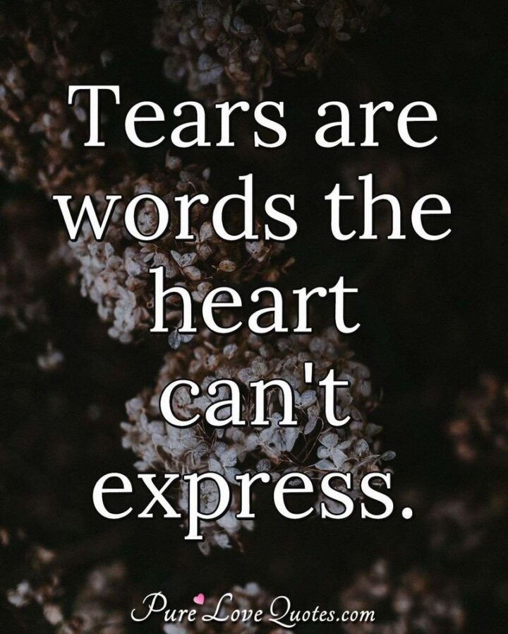 """51 Sad Quotes About Life - """"Tears are words the heart can't express."""""""
