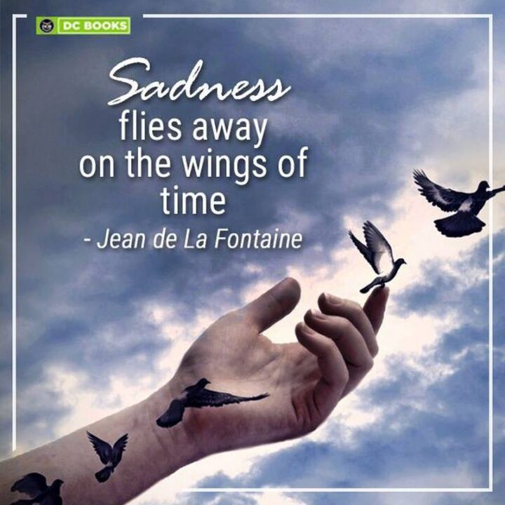 """""""Sadness flies away on the wings of time."""" - Jean de La Fontaine"""